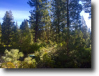 California Land 1 Acres Gorgeous homesite to live your dreams!