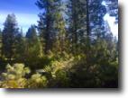 California Land 1 Acres Gorgeous homesite to live your dreams!