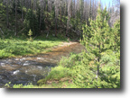Colorado Gold Mining Claim 40 acres with Creek