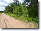 40 acres in Iron River, WI