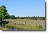Florida Land 127 Acres Cherokee Ranch