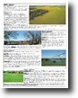 5/17/16 Auction: 1800 Acres Crop/Pasture