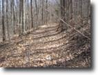 New York Hunting Land 50 Acres Land in Van Etten NY Timberland & Stream