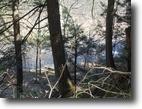 17+ acres on Fish Creek, Taberg NY