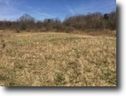 Land in Angelica NY Woods Hunting 93 Acres