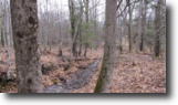 Land near Cooperstown NY Woodland 28 Acres