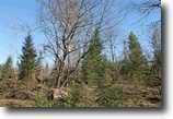 Michigan Hunting Land 68 Acres Lot 2 Holli Blue Rd., MLS# 1093797
