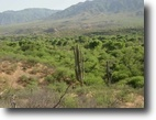Arizona Waterfront 4 Acres Stunning Land In Beautiful Tonto Basin Az