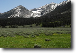 Montana Ranch Land 300 Acres Montana ranch for sale next to Yellowstone