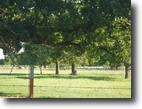 Texas Land 112 Acres 000 cr 118