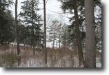 Michigan Waterfront 2 Acres Lot 8 East Lake Drive, MLS# 1093838