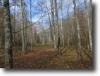 31.99 acres in Adair County