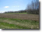 New York Farm Land 90 Acres Farmland & Timberland near Keuka Lake NY