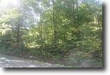 47 Acre Wooded Tract