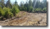 Maine Hunting Land 8 Acres In the Beautiful State of Maine