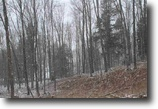 Michigan Land 4 Acres Lot 15 Little Smoky Dr., MLS# 1093913