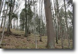 Michigan Land 6 Acres Lot 24 Little Smoky Dr., MLS# 1093923