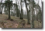 Michigan Land 5 Acres Lot 25 Little Smoky Dr., MLS# 1093924