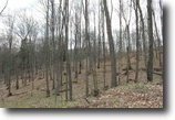 Michigan Land 5 Acres Lot 26 Little Smoky Dr., MLS # 1093925