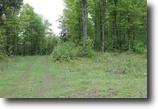 Michigan Land 5 Acres Lot 26 Little Smoky Dr., MLS # 1093925