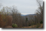 60+ Acres with Great Views
