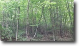 Virginia Hunting Land 7 Acres Wooded Tract Near Blue Ridge Parkway