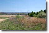 Tennessee Land 16 Acres Homesite or Commercial opportunity