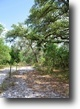 Groveland 42 Acres and Home