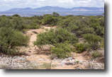 Arizona Land 117 Acres 117ac Development Investment-St. David, AZ