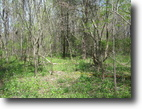 New York Land 27 Acres Land in Sterling NY near Lake Ontario