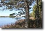 Michigan Waterfront 2 Acres Lot 4 Rice Lake Rd., Mls# 1094780