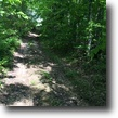 Kentucky Hunting Land 124 Acres Reduced: Hunters 124+/- Elliott KY $69,000