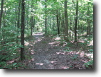 Missouri Land 12 Acres Private Unique Mostly Wooded