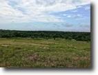 Texas Ranch Land 114 Acres 2367 Advance Rd