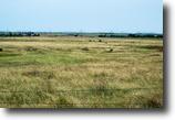 7/18/16 Auction: 160 Acres of Pasture/Crop