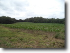 Beautiful acreage to build your dream home