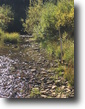 Colorado Hunting Land 40 Acres Colorado Gold MiningClaim 40 ac.with Creek