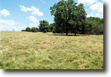 7/26 Auction: 192.46 Acres in McClain Co