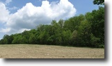 68 acres Hunting Land in Greene NY
