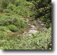 Colorado Hunting Land 20 Acres $500/mo Colorado 20 ac.MiningClaim w/Creek