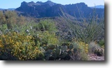 Arizona Hunting Land 20 Acres Arizona Superstition Mts 20 ac MiningClaim