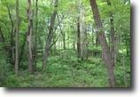 11 acres in Camden NY near Oneida Lake