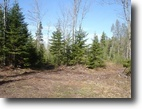 Wisconsin Land 89 Acres Town of Hawthorne