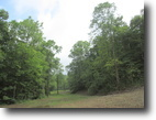 109 Acre Hunting Tract In Adair County