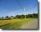 Kentucky Land 2 Acres Online Auction  Residential and Duplex Lot