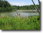 New York Waterfront 5 Acres Large Recreational Pond in Dryden NY 5 Ac