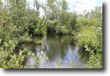 66 Acres in Williamstown NY Salmon River