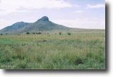 Arizona Farm Land 180 Acres 180 ac Best investment in Elgin AZ