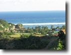 Indonesia Hunting Land 130 Acres Prabu Hill, South Lombok Measure 1.3 Ha