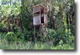 Florida Hunting Land 410 Acres Cedar Key Hunting Preserve